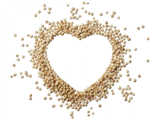 Quinoa shutterstock