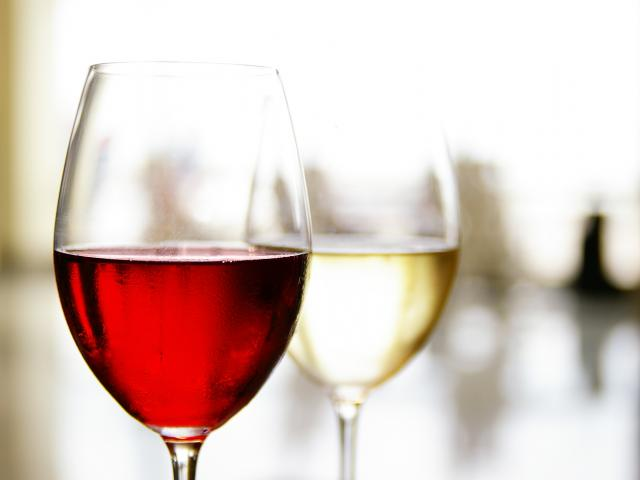 Virgin-wines-biggest-ever-wine-tasting-goes-down-a-treat-12051
