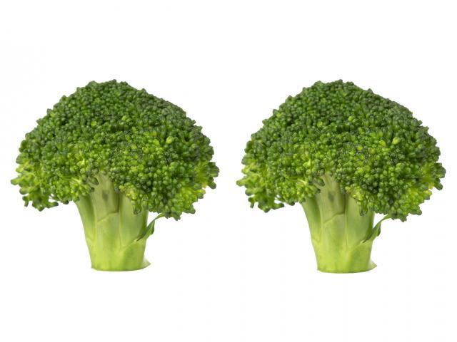 Broccoli-florets-shutterstock