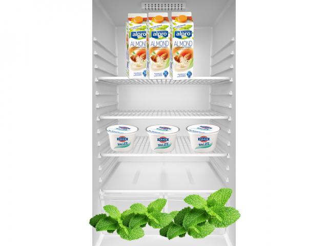 Emily fridge