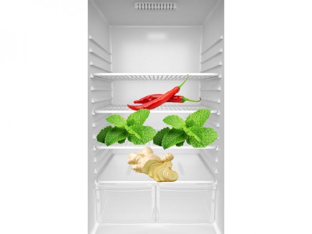 Fran fridge