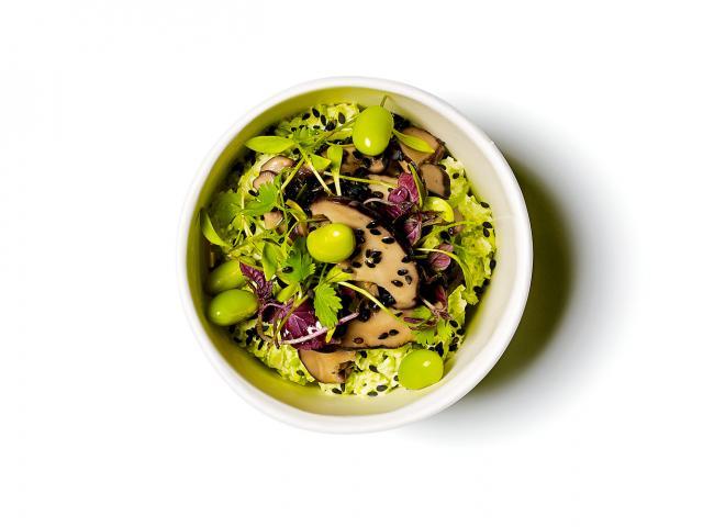 Edamame-tofu-puree,-pickled-shiitake,-sesame,-coriander-copy