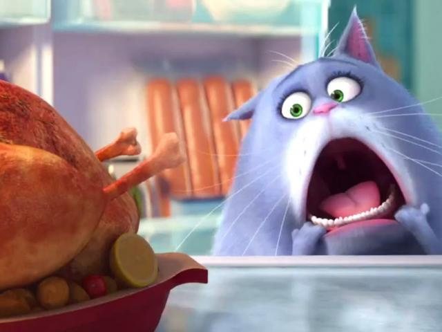 which secret life of pets animal are you   women s health