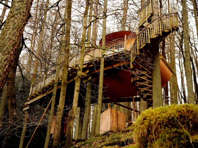 Wales-treehouse