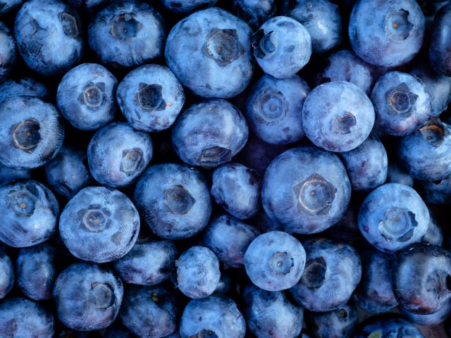 Blueberries shutterstock