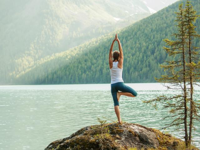 Woman tree pose yoga shutterstock