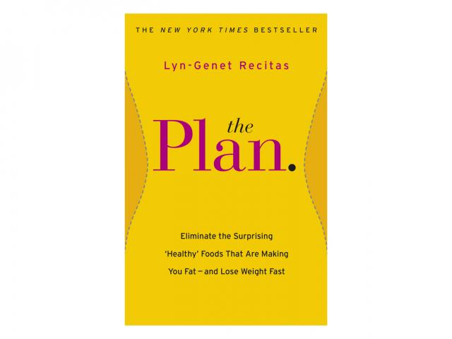 The plan by lyn-genet recitas