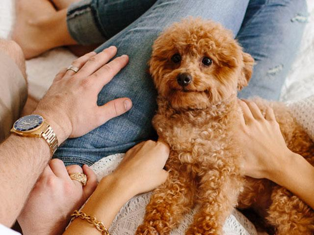 Is it normal to talk to your pets?  - Women's Health UK