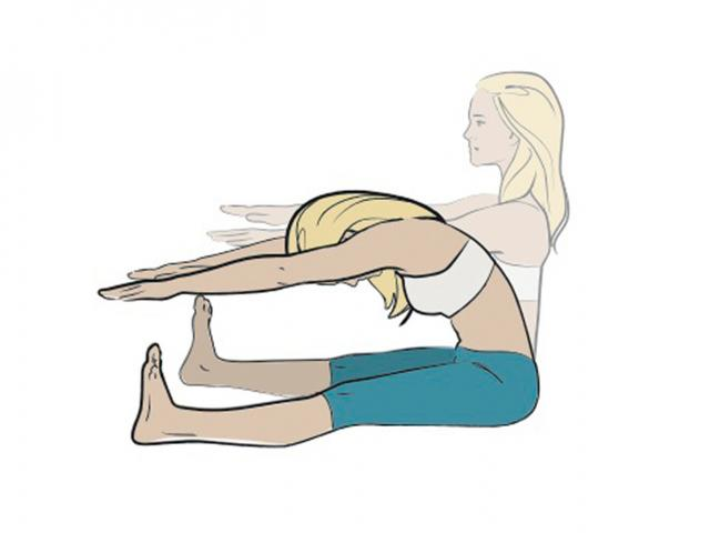 Image result for Forward Spine Stretch